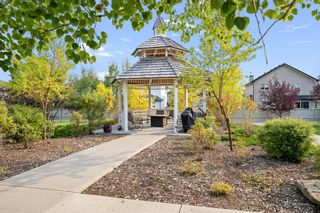 Photo 33: 226 1 Crystal Green Lane: Okotoks Apartment for sale : MLS®# A1146254