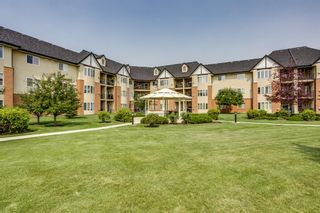 Photo 33: 2244 48 Inverness Gate SE in Calgary: McKenzie Towne Apartment for sale : MLS®# A1130211