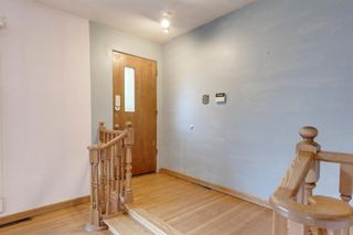 Photo 5: 2935 Burgess Drive NW in Calgary: Brentwood Detached for sale : MLS®# A1132281