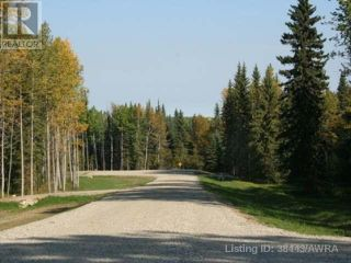 Photo 15: 53018 RANGE RD 175 in Rural Yellowhead County: Vacant Land for sale : MLS®# AW38443