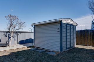 Photo 34: 227 Silver Springs Way NW: Airdrie Detached for sale : MLS®# A1083997