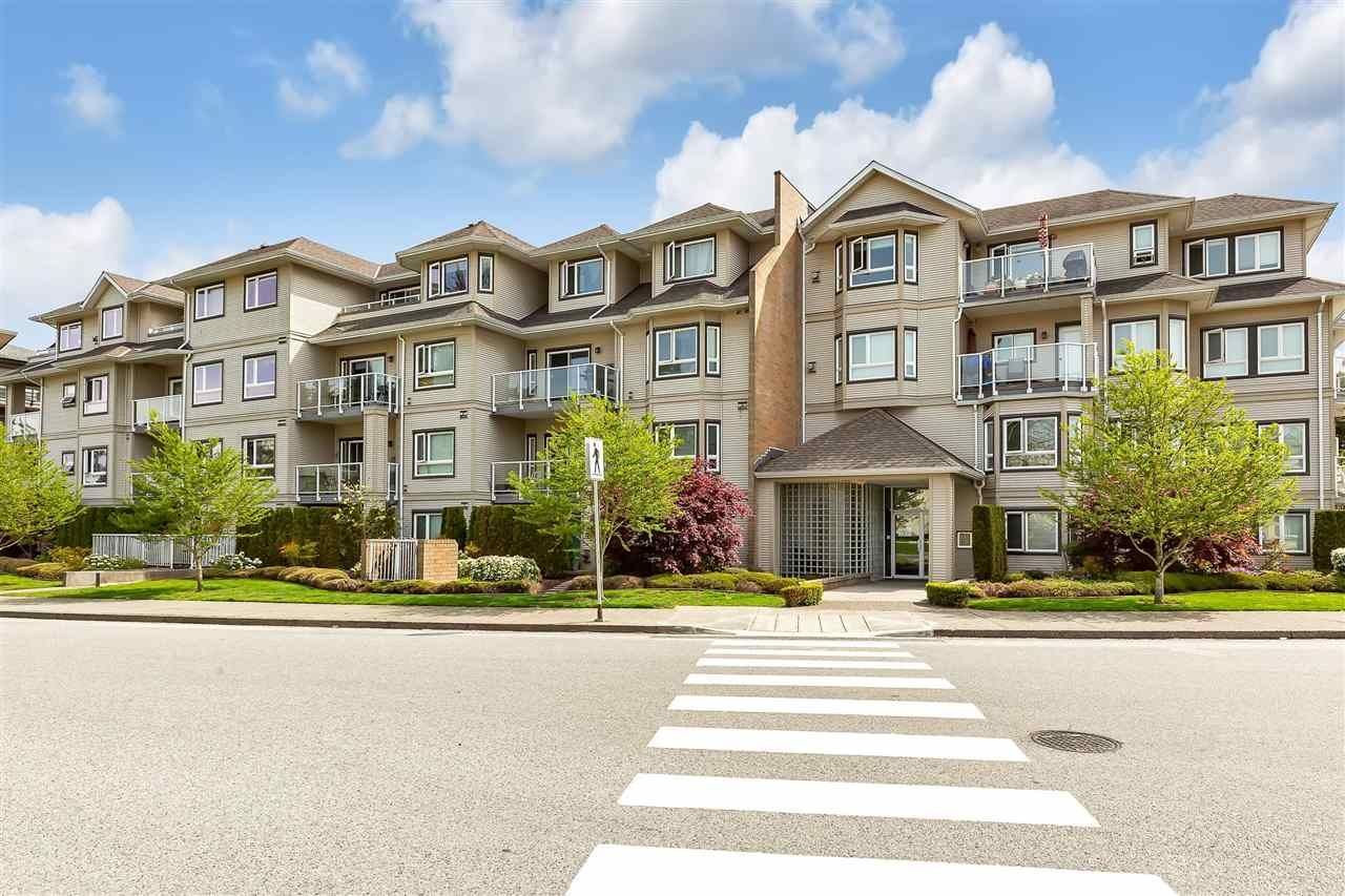 """Photo 1: Photos: 217 8142 120A Street in Surrey: Queen Mary Park Surrey Condo for sale in """"Sterling Court"""" : MLS®# R2539103"""