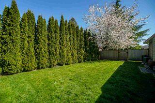 "Photo 27: 12411 204B Street in Maple Ridge: Northwest Maple Ridge House for sale in ""ALVERA PARK"" : MLS®# R2567810"