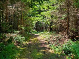 "Photo 15: Lot 49 FLINT Road: Keats Island Land for sale in ""10 Acres"" (Sunshine Coast)  : MLS®# R2460996"