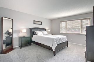 Photo 30: 92 Coopers Heights SW: Airdrie Detached for sale : MLS®# A1129030