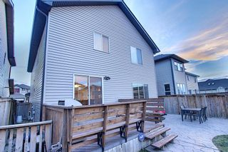 Photo 50: 1009 Prairie Springs Hill SW: Airdrie Detached for sale : MLS®# A1042404