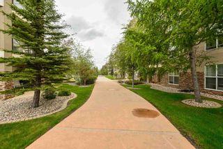 Photo 33: 203 8922 156 Street in Edmonton: Zone 22 Condo for sale : MLS®# E4248729