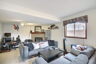 Photo 24: 279 Coral Springs Circle NE in Calgary: Coral Springs Detached for sale : MLS®# A1083552