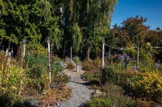 Photo 23: 951 Jasmine Ave in Saanich: SW Marigold House for sale (Saanich West)  : MLS®# 886878