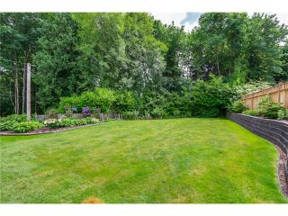 Photo 16: 38 MOUNT ROYAL Drive in Port Moody: College Park PM House for sale : MLS®# V1069976
