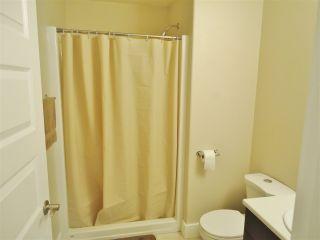 """Photo 10: 10412 109 Street in Fort St. John: Fort St. John - City NW 1/2 Duplex for sale in """"SUNSET RIDGE"""" (Fort St. John (Zone 60))  : MLS®# R2415787"""