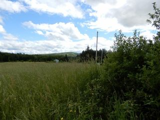 Photo 4: Lot 17 Second Division Road in Heathbell: 108-Rural Pictou County Vacant Land for sale (Northern Region)  : MLS®# 202116209