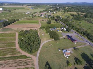 Photo 21: 2969 Highway 1 in Aylesford East: 404-Kings County Farm for sale (Annapolis Valley)  : MLS®# 201919454