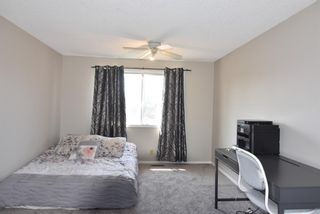 Photo 15: 199 Templeby Drive NE in Calgary: Temple Detached for sale : MLS®# A1140343