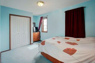 Photo 17: 325 CORAL SPRINGS Place NE in Calgary: Coral Springs Detached for sale : MLS®# A1066541