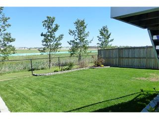Photo 41: 772 LUXSTONE Landing SW: Airdrie House for sale : MLS®# C4016201