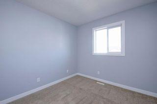 Photo 27: 218 SADDLEBROOK Way NE in Calgary: Saddle Ridge Detached for sale : MLS®# A1037263