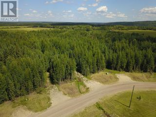 Photo 7: L11 B2 GRIZZLY RIDGE ESTATES in Rural Woodlands County: Vacant Land for sale : MLS®# A1046276