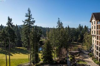 Photo 17: 3918 S Island Hwy in VICTORIA: CR Campbell River South House for sale (Campbell River)  : MLS®# 758019