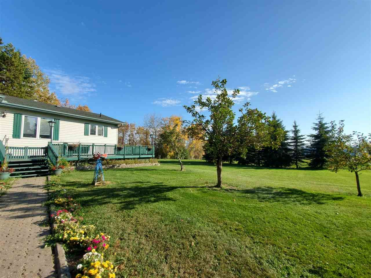 Photo 31: Photos: 265073 Twp Rd 472A: Rural Wetaskiwin County House for sale : MLS®# E4216435