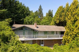 Photo 40: 35176 MARSHALL Road in Abbotsford: Abbotsford East House for sale : MLS®# R2602870