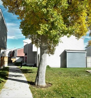Photo 3: 30 5425 Pensacola Crescent SE in Calgary: Penbrooke Meadows Row/Townhouse for sale : MLS®# A1149684
