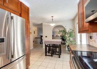 Photo 8: 12 Deerfield Drive SE in Calgary: Deer Ridge Detached for sale : MLS®# A1136598