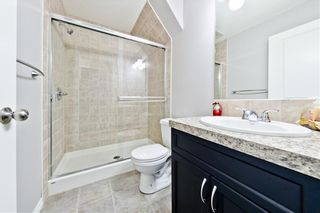 Photo 17: 169 SKYVIEW RANCH DR NE in Calgary: Skyview Ranch House for sale : MLS®# C4278111
