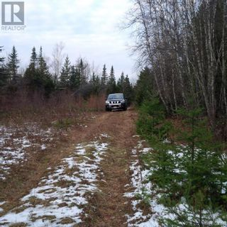Photo 13: - Yourette Road in Dewolfe: Vacant Land for sale : MLS®# NB062662