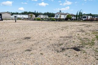 Photo 7: 86 454029 RGE RD 11: Rural Wetaskiwin County Rural Land/Vacant Lot for sale : MLS®# E4258383