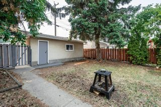 Photo 42: 9248 OTTEWELL Road in Edmonton: Zone 18 House for sale : MLS®# E4254840