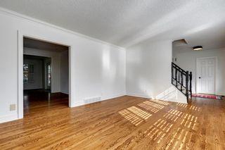 Photo 10: 7311 11 Street SW in Calgary: Kelvin Grove Detached for sale : MLS®# A1049038