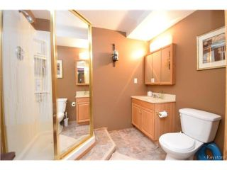 Photo 16: 114 Pinetree Crescent in Winnipeg: Riverbend Residential for sale (4E)  : MLS®# 1709745