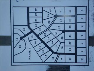 Photo 15: 314 55504 Rge Rd 13: Rural Lac Ste. Anne County Rural Land/Vacant Lot for sale : MLS®# E4213581