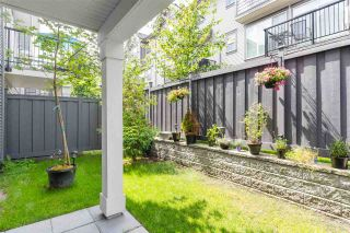 """Photo 17: 55 8217 204B Street in Langley: Willoughby Heights Townhouse for sale in """"EVERLY GREEN"""" : MLS®# R2437299"""
