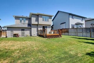 Photo 36: 317 Ranch Close: Strathmore Detached for sale : MLS®# A1128791