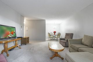 """Photo 5: 103 12096 222 Street in Maple Ridge: West Central Condo for sale in """"Canuck Plaza"""" : MLS®# R2521052"""