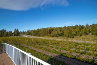 Photo 8: 2470 Glenmore Road, in Kelowna: Agriculture for sale : MLS®# 10231121