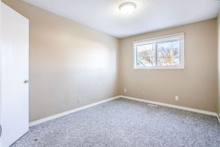 Photo 12: 10175 89 Street in Edmonton: Zone 13 House Duplex for sale : MLS®# E4222726