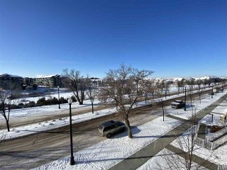 Photo 17: 302 1003 GAULT Boulevard in Edmonton: Zone 27 Condo for sale : MLS®# E4228011