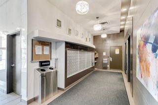 Photo 38: 209 188 15 Avenue SW in Calgary: Beltline Apartment for sale : MLS®# A1119413