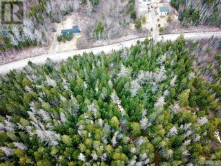 Photo 16: 96 Limekiln Road in Letang: Vacant Land for sale : MLS®# NB055632