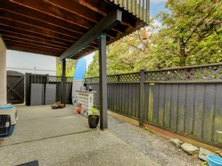 Photo 34: 3908 Lianne Pl in : SW Strawberry Vale House for sale (Saanich West)  : MLS®# 875878