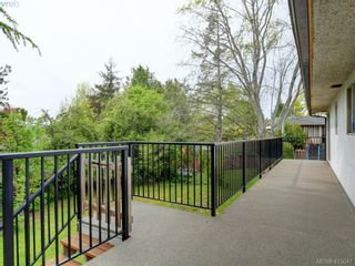 Photo 21: 4094 Atlas Pl in VICTORIA: SW Glanford House for sale (Saanich West)  : MLS®# 819091