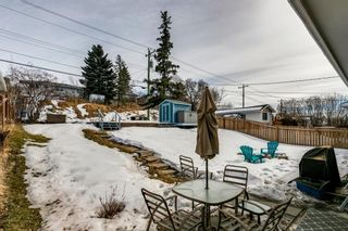 Photo 39: 1444 16 Street NE in Calgary: Mayland Heights Detached for sale : MLS®# A1074923