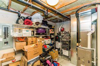 Photo 59: 4901 Northeast Lakeshore Road in Salmon Arm: Raven House for sale (NE Salmon Arm)  : MLS®# 10114374