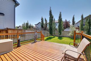 Photo 17: 317 Ranch Close: Strathmore Detached for sale : MLS®# A1128791
