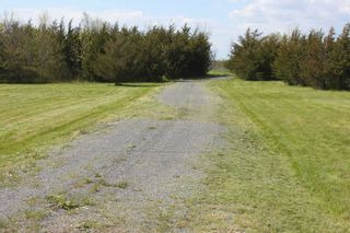 Photo 8: Pt Lot County Rd 15 in Prince Edward County: Sophiasburgh Property for sale : MLS®# X5225157