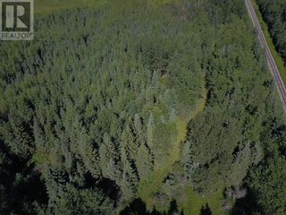 Photo 9: W5-9-59-8-NW Range Road 95 in Rural Woodlands County: Vacant Land for sale : MLS®# A1137159