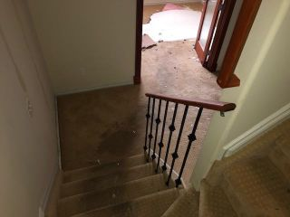 Photo 14: 5116 200 Street in Edmonton: Zone 58 House for sale : MLS®# E4244085